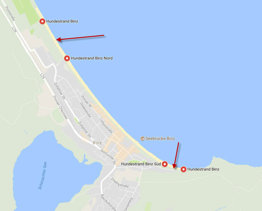 Map showing the two dog beaches in BINZ