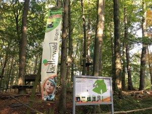 Eingang Kletterwald