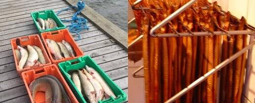 Frischer Fisch Varianten