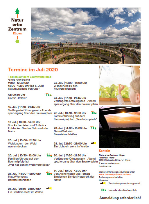 Program Treetop Trail Prora July 2020