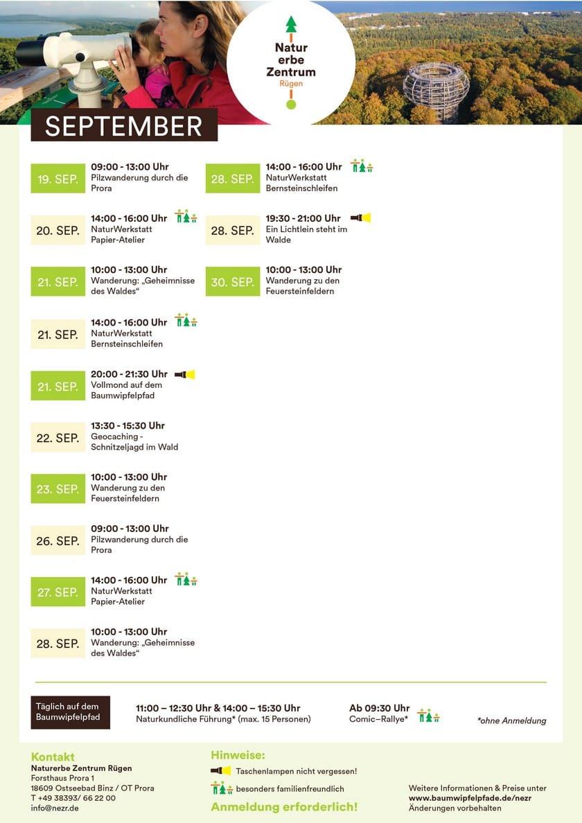Treetop Path September21-1